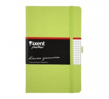 Канцелярская книга Axent Partner, 125*195, 96sheets, square, light green (8201-04-А)
